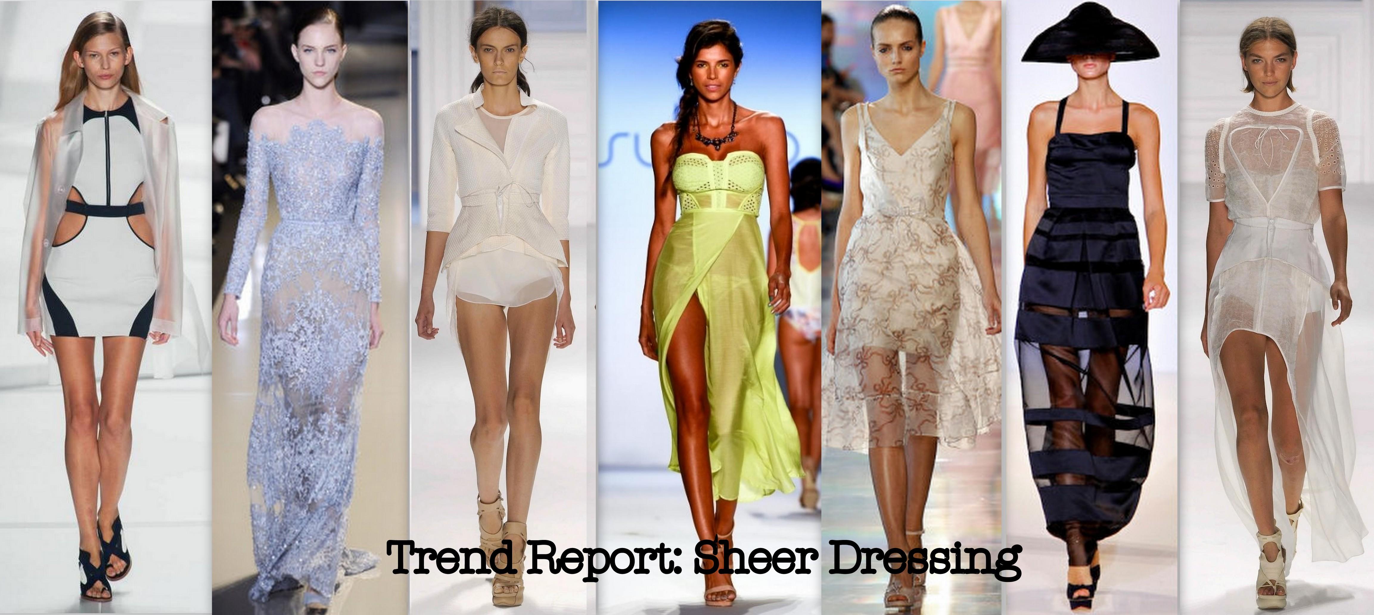 Question #14: Transparent Clothes: Sheer Genius or Ridiculousness?
